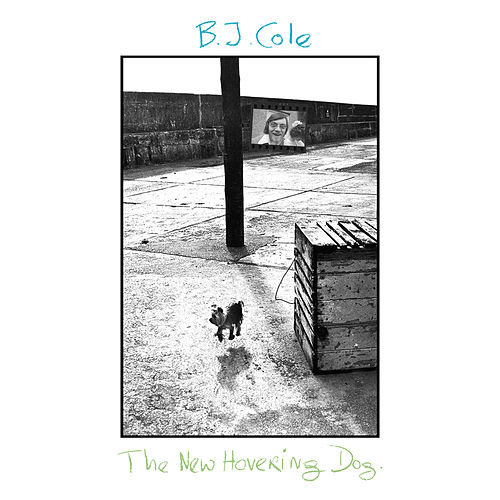 The New Hovering Dog by B.J. Cole