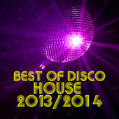 Best of Disco House 2013-2014 by Various Artists