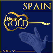 Flamenco Gold. Spain. Vol. V by Various Artists