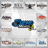 Que Suene Mexico, Vol. 3 by Various Artists
