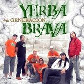 4ta Generación by Yerba Brava