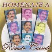 Homenaje a Romulo Caicedo by Various Artists