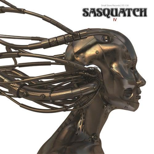 Iv by Sasquatch