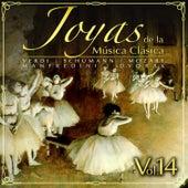 Joyas de la Música Clásica Vol. 14 by Various Artists
