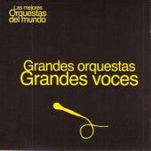 Las Mejores Orquestas del Mundo Vol.18: Grandes Voces by Various Artists