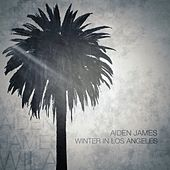 Winter in Los Angeles by Aiden James