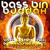 Bass Bin Buddah (40 Top Psystep, Groovy Lounge, Electro Chill, Downtempo Dubstep) by Various Artists