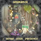 I Sense Your Presence (Remastered) by Shimshai