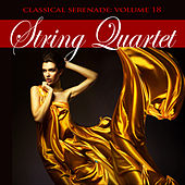 Classical Serenade: String Quartet, Vol. 18 by Various Artists