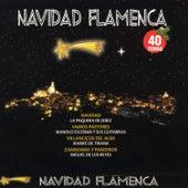 Navidad Flamenca by Various Artists