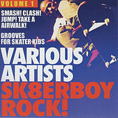 Sk8terboy Rock!, Vol. 1 by Various Artists