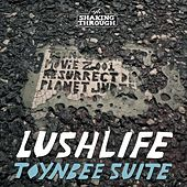 Toynbee Suite by Lushlife