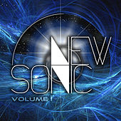 Newsonic Vol. 1 by Various Artists