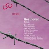 Beethoven: Fidelio by Ludwig van Beethoven