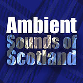 Ambient Sounds of Scotland by Various Artists
