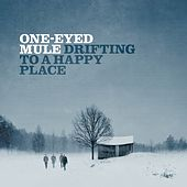 Drifting to a Happy Place by One-Eyed Mule