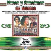 Voces Y Canciones De México - Feria Mexicana by Lorenzo De Monteclaro