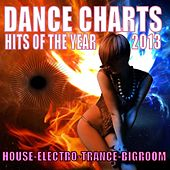 Dance Charts Hits of the Year 2013 by Various Artists