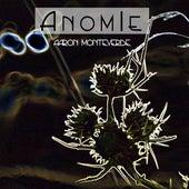Anomie 2013 by Aaron Monteverde