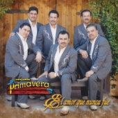 El Amor Que Nunca Fue by Conjunto Primavera