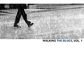 Walking The Blues, Vol. 1 von Various Artists