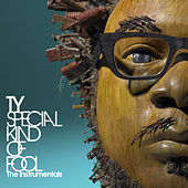 Special Kind of Fool - The Instrumentals by TY
