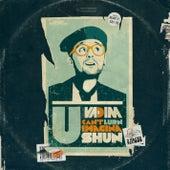 U Can't Lurn Imaginashun by DJ Vadim