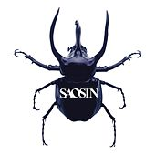 Voices (Acoustic) by Saosin