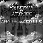 When the Sky Falls (feat. Jaeden Zoe) by Young Sam