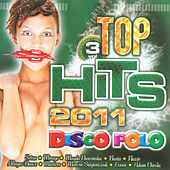 Top Hits 2011 Vol. 3 by Various Artists