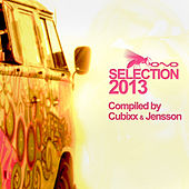 Selection 2013 by Various Artists
