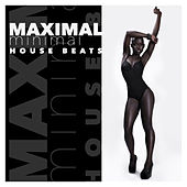 Maximal Minimal House Beats by Various Artists