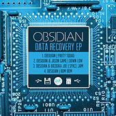 Data Recovery EP by Obsidian