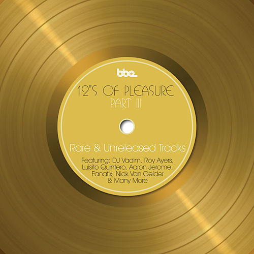 12's Of Pleasure - Part III by Various Artists