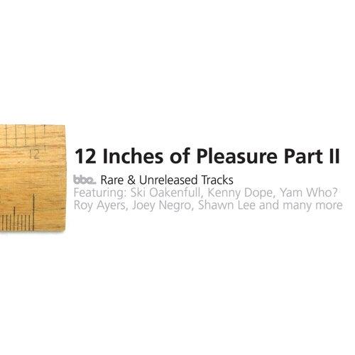 12' Of Pleasure II by Various Artists