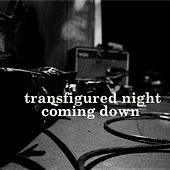 Coming Down by Transfigured Night