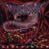 Serenadium by Iniquity