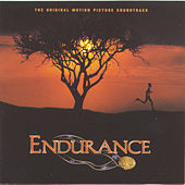 Endurance by John Powell