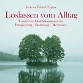 Loslassen vom Alltag: Wundervolle Meditationsmusik by Gomer Edwin Evans