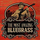 The Most Amazing Bluegrass by Various Artists