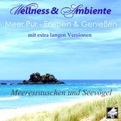 Meer pur: Erleben und genießen - Meeresrauschen und Seevögel (Lange Version) by Wellness