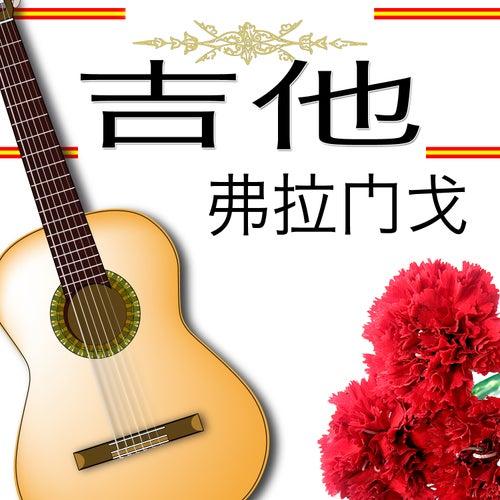 吉他 弗拉门戈 by Various Artists