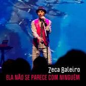 Ela Não Se Parece Com Ninguém (Single) by Zeca Baleiro