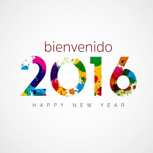 Feliz Año Nuevo: Bienvenido 2014 by Various Artists