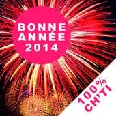Bonne année 2014 (Nouvel an 100% ch'ti) by Various Artists
