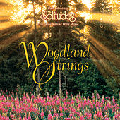 Woodland Strings by Dan Gibson's Solitudes
