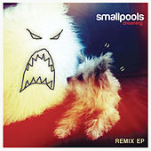 Dreaming Remix EP by Smallpools