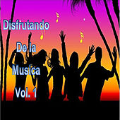 Disfrutando de la Musica, Vol. 1 by Various Artists