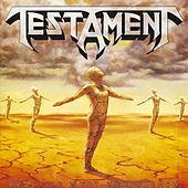 Practice What You Preach by Testament