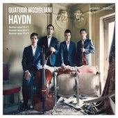 Quatuor Modigliani: Haydn by Quatuor Modigliani